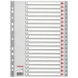Register Esselte PP A4 1-20 grå